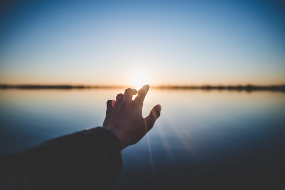 Where do you find light in your life? | Mary Shields PhD.